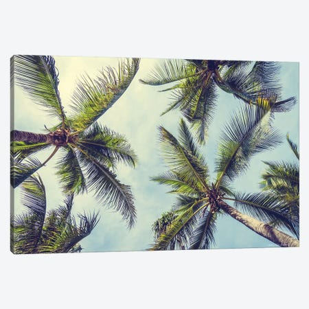Palms in the Sky Canvas Print #STD132} by Seven Trees Design Canvas Art Print