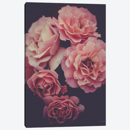 Dreamy Roses Canvas Print #STD148} by Seven Trees Design Canvas Art