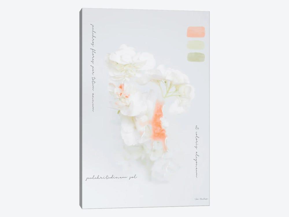 Modern Vintage Botanical by Seven Trees Design 1-piece Canvas Art Print