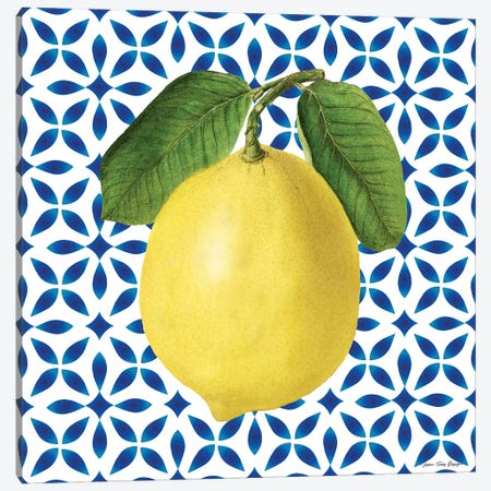 Mediterranean Lemon Canvas Print #STD164} by Seven Trees Design Art Print