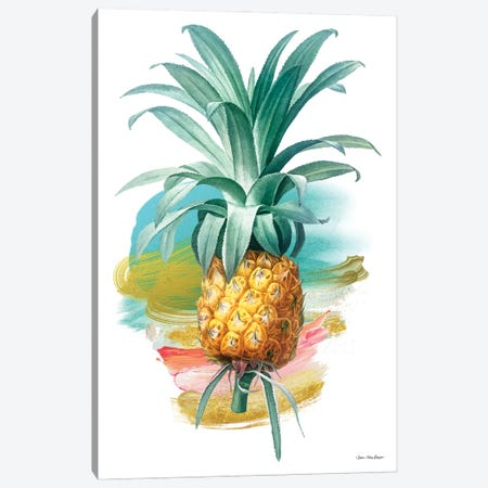 Pineapple I Canvas Print #STD167} by Seven Trees Design Canvas Print