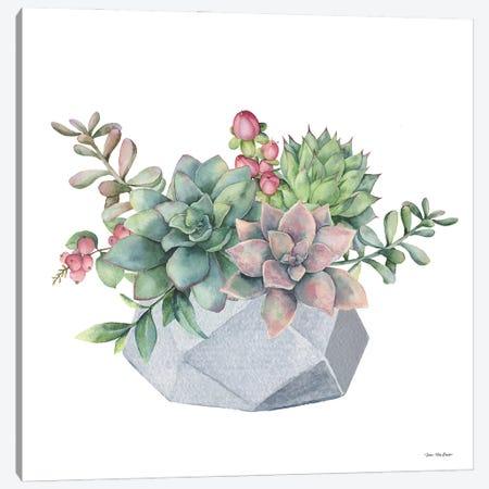 Watercolor Succulents Canvas Print #STD175} by Seven Trees Design Canvas Artwork