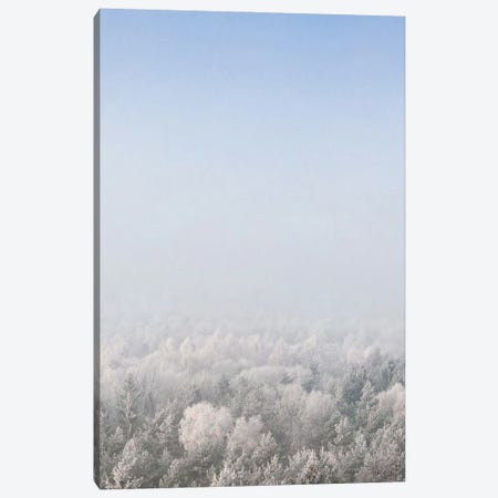 Snow Forest From The Sky Canvas Print #STD207} by Seven Trees Design Canvas Wall Art