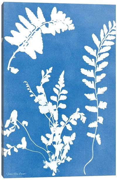 Blue Botanical II Canvas Art Print