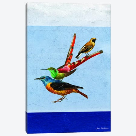 Stacked Birds Canvas Print #STD56} by Seven Trees Design Canvas Art Print