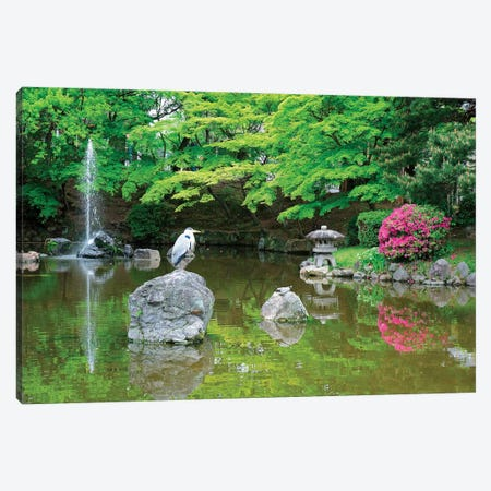 Heron In A Pond, Kyoto Prefecture, Japan Canvas Print #STE1} by Shin Terada Canvas Art Print
