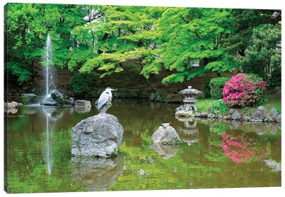 Heron In A Pond, Kyoto Prefecture, Japan Canvas Art Print