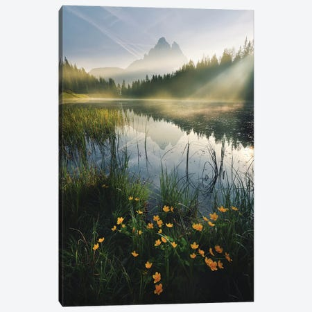 Lothlórien Canvas Print #STF105} by Stefan Hefele Canvas Art