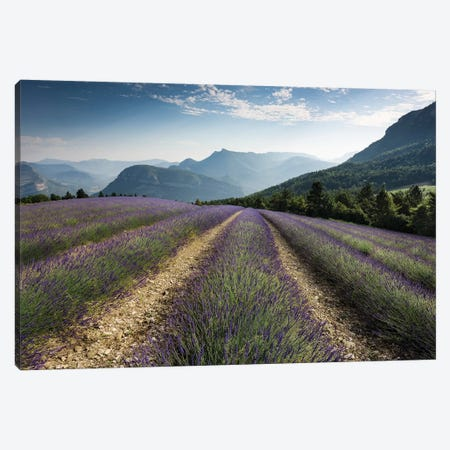 Mountain Lavender, The Alps Canvas Print #STF114} by Stefan Hefele Art Print