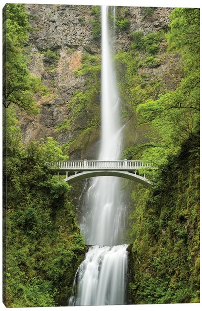 Multnomah Falls, Oregon Canvas Art Print
