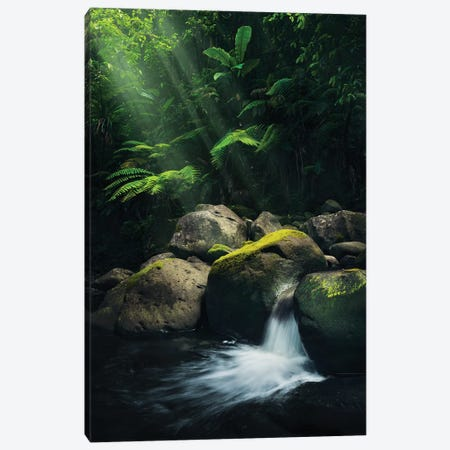 Mystic Spot Canvas Print #STF116} by Stefan Hefele Canvas Print