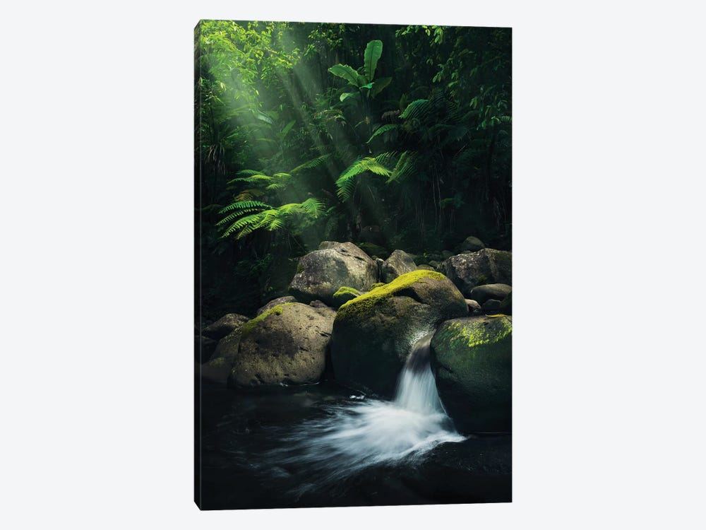Mystic Spot by Stefan Hefele 1-piece Canvas Print