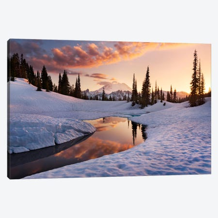 America The Beautiful - Mount Rainier Canvas Print #STF11} by Stefan Hefele Canvas Wall Art