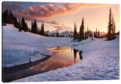 America The Beautiful - Mount Rainier Canvas Art Print