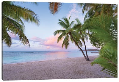 Palm Beach, Caribbean Canvas Art Print