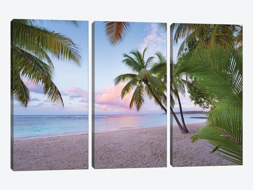 Palm Beach, Caribbean by Stefan Hefele 3-piece Canvas Wall Art