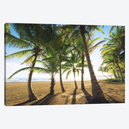 Palm Island, Puerto Rico Canvas Print #STF123} by Stefan Hefele Canvas Art Print