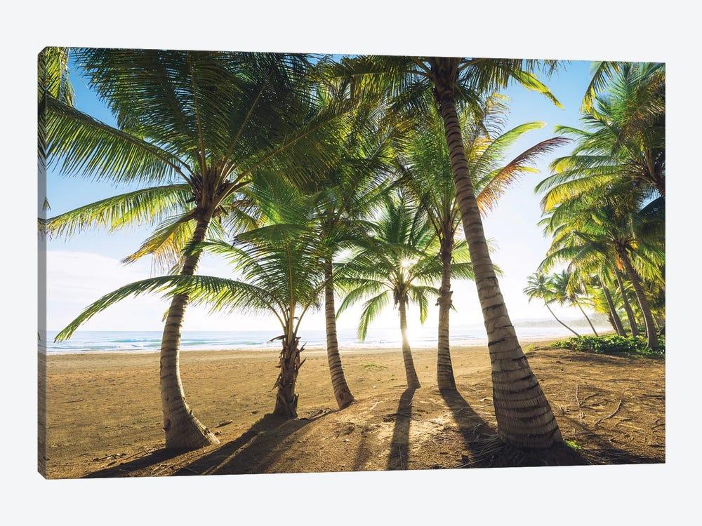 Palm Island, Puerto Rico by Stefan Hefele 1-piece Canvas Art Print