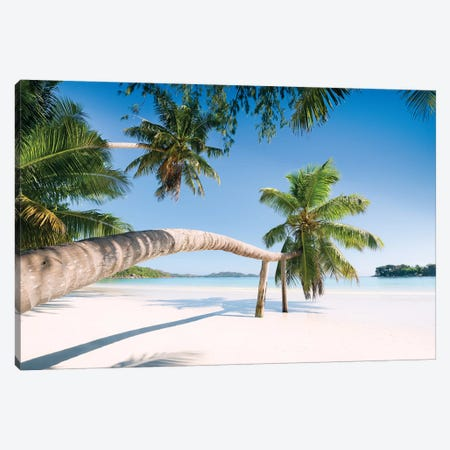 Palm, Seychelles Canvas Print #STF124} by Stefan Hefele Canvas Wall Art