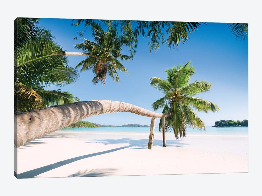 Palm, Seychelles by Stefan Hefele 1-piece Canvas Artwork