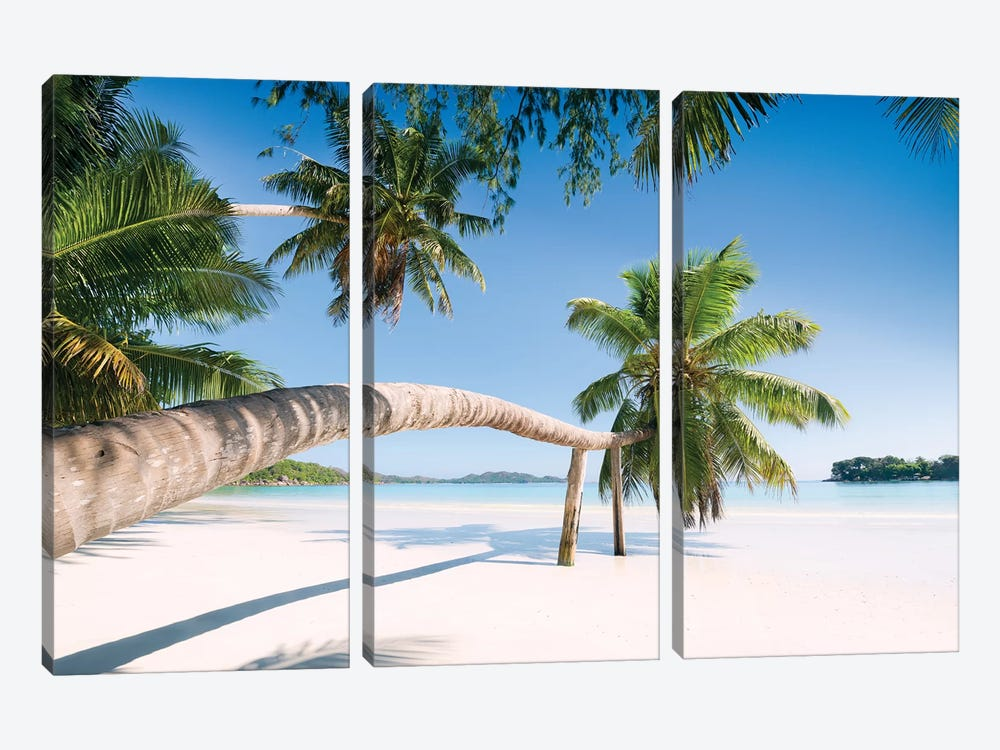 Palm, Seychelles by Stefan Hefele 3-piece Canvas Artwork