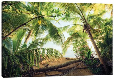Pirate's Hideout, Caribbean Canvas Art Print