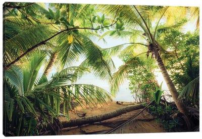 Pirate's Hideout, Caribbean Canvas Art Print
