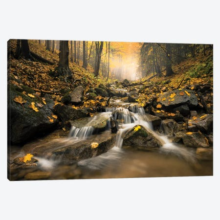 Realm Of Illusions Canvas Print #STF134} by Stefan Hefele Canvas Print