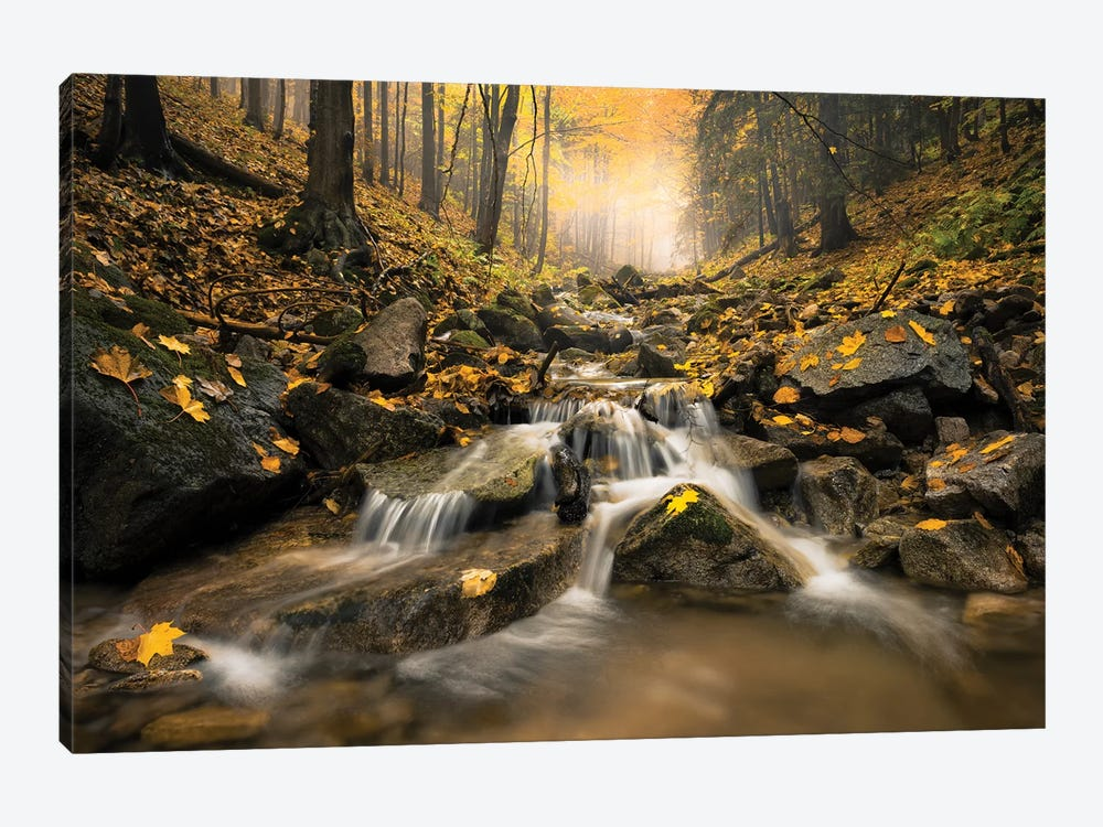Realm Of Illusions by Stefan Hefele 1-piece Canvas Art Print