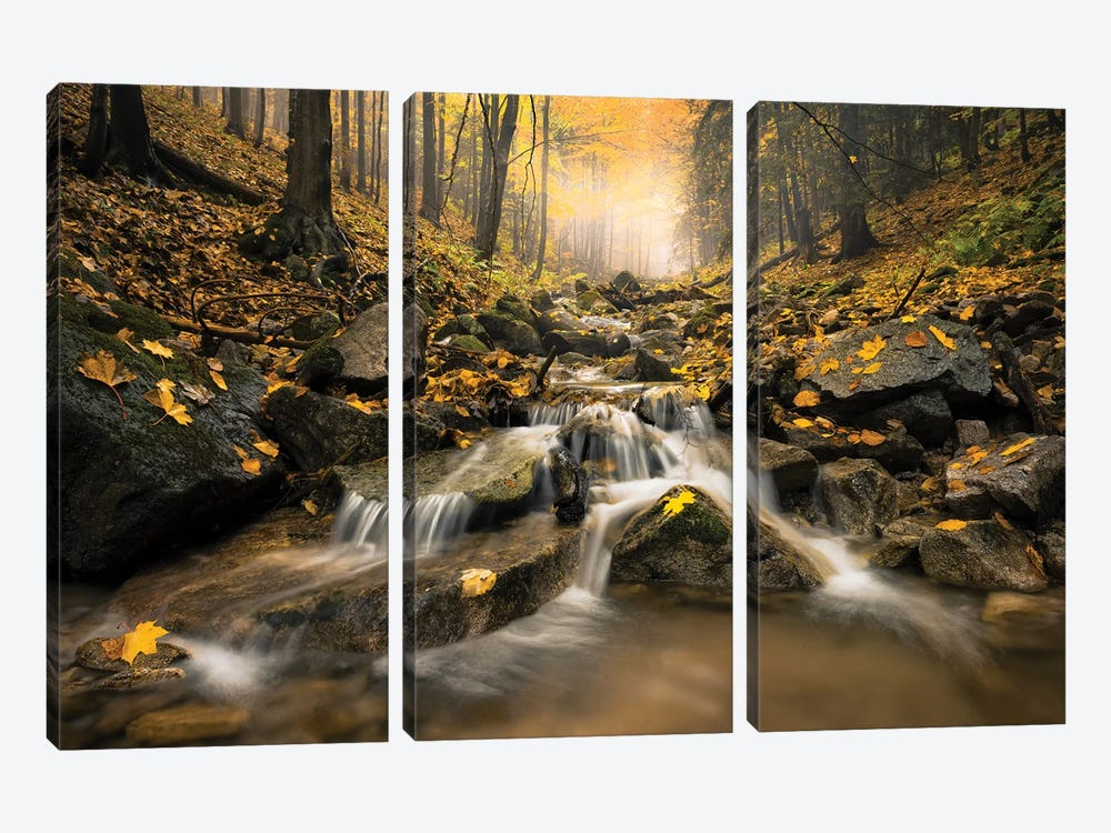 Realm Of Illusions by Stefan Hefele 3-piece Canvas Print