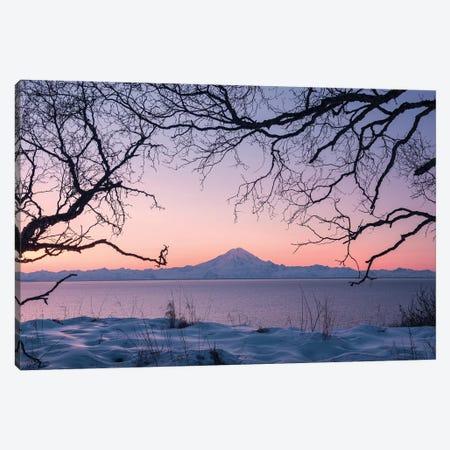 Redoubt Volcano, Aleutians, Alaska Canvas Print #STF136} by Stefan Hefele Art Print