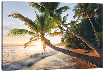 Secret Beach, Caribbean Canvas Art Print