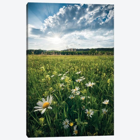 Summer Breeze Canvas Print #STF151} by Stefan Hefele Canvas Wall Art