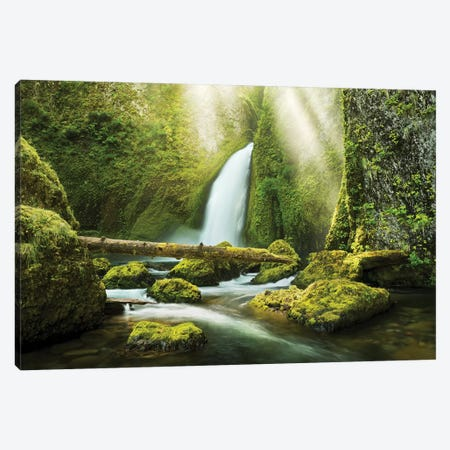 The Creation Canvas Print #STF155} by Stefan Hefele Canvas Art Print