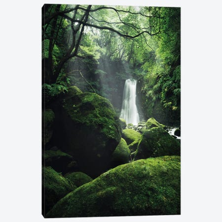 The Luscious Grotto Canvas Print #STF167} by Stefan Hefele Canvas Art