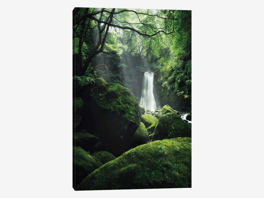 The Luscious Grotto by Stefan Hefele 1-piece Canvas Art Print
