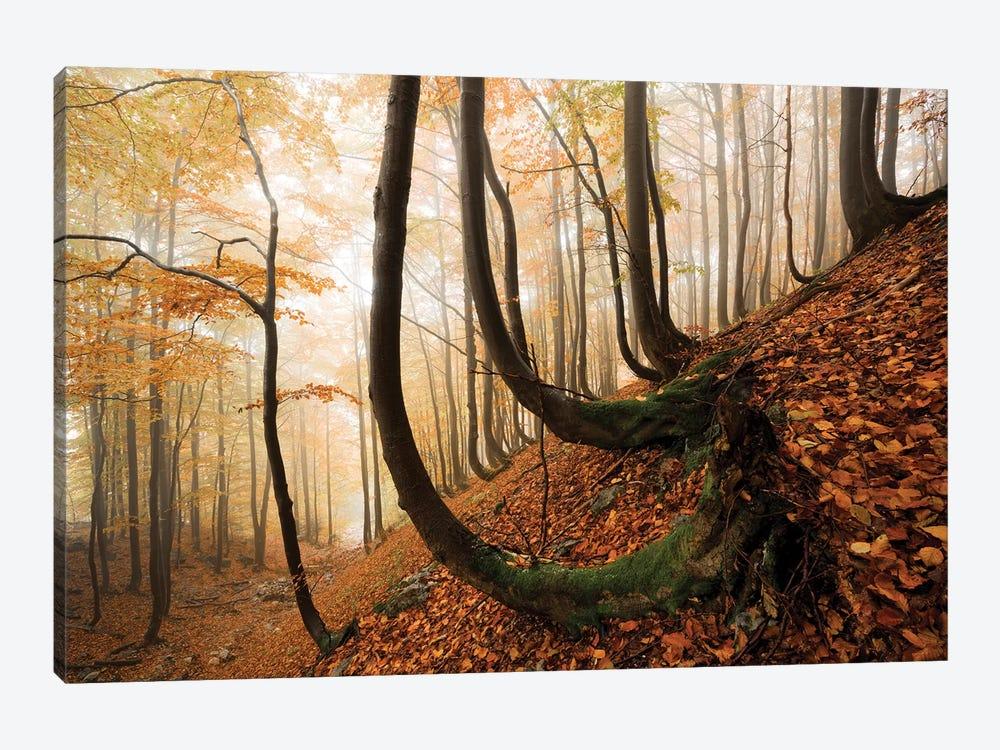 Trollshaws by Stefan Hefele 1-piece Art Print