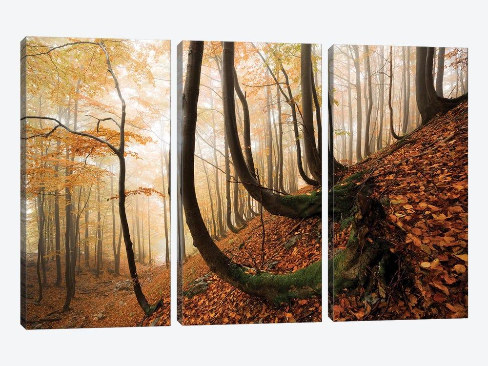 Trollshaws by Stefan Hefele 3-piece Art Print