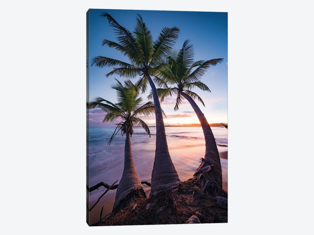 Tropical Triple - Caribbean by Stefan Hefele 1-piece Canvas Artwork