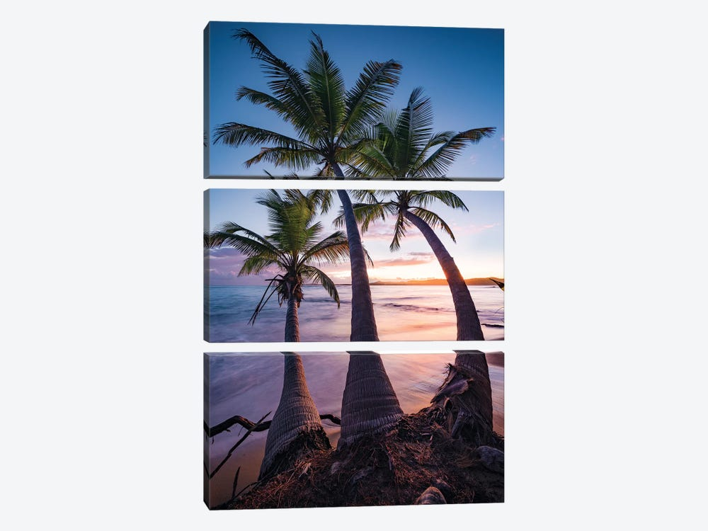 Tropical Triple - Caribbean by Stefan Hefele 3-piece Canvas Wall Art
