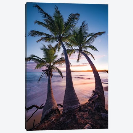 Tropical Triple - Caribbean Canvas Print #STF173} by Stefan Hefele Canvas Wall Art