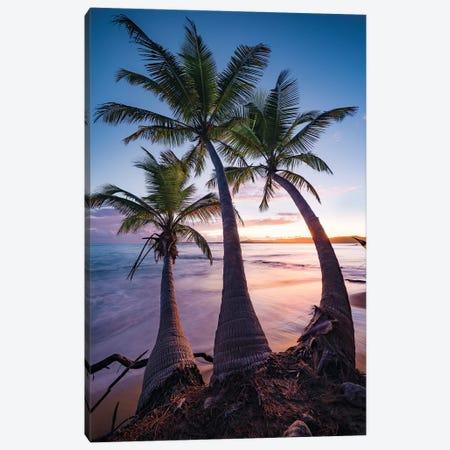 Tropical Triple - Caribbean Canvas Print #STF173} by Stefan Hefele Canvas Wall Art