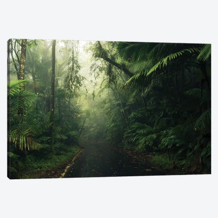 Tropical World - Caribbean Canvas Print #STF174} by Stefan Hefele Art Print