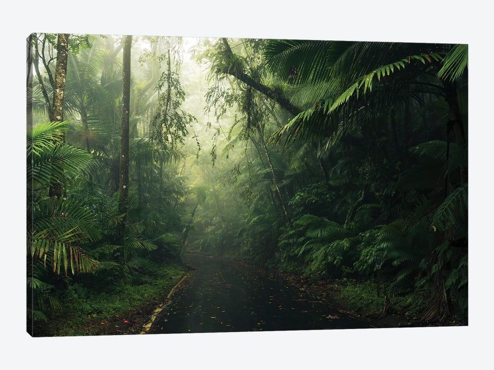 Tropical World - Caribbean by Stefan Hefele 1-piece Canvas Art Print