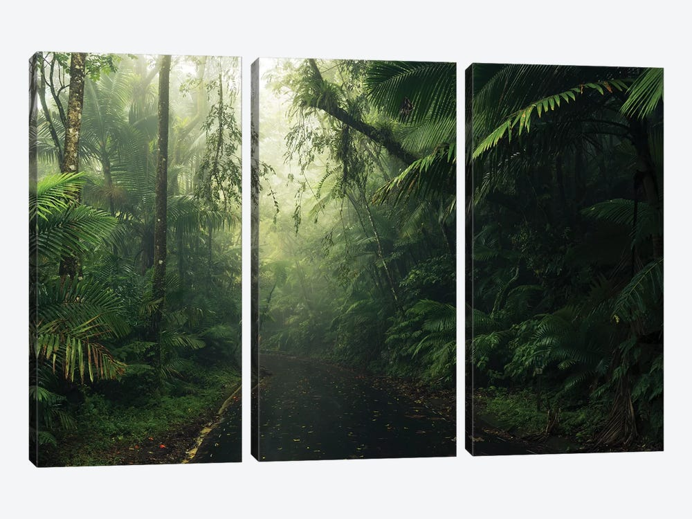 Tropical World - Caribbean by Stefan Hefele 3-piece Canvas Art Print