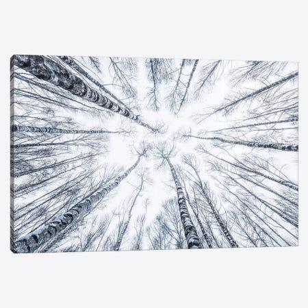 Upside Down Canvas Print #STF177} by Stefan Hefele Canvas Art Print