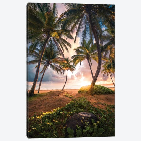 Vertical Paradise - Caribbean Canvas Print #STF180} by Stefan Hefele Canvas Print