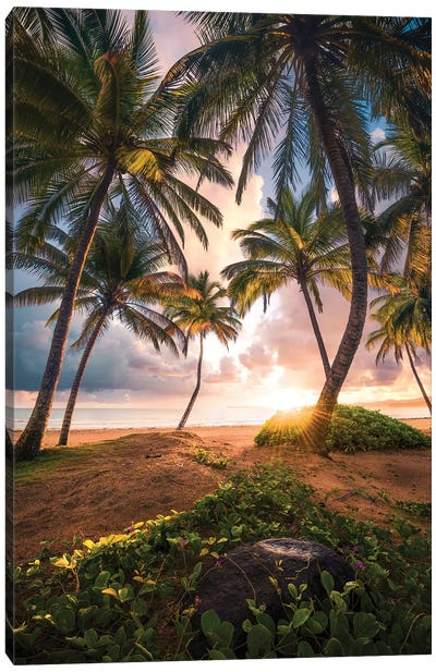 Vertical Paradise - Caribbean Canvas Art Print