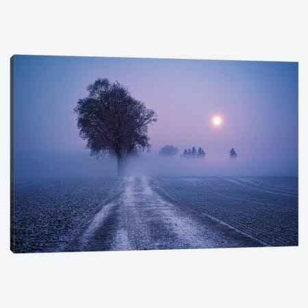 Winter Moon Canvas Print #STF184} by Stefan Hefele Canvas Wall Art