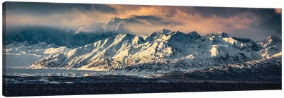Your Majesty - Denali, Alaska Canvas Art Print